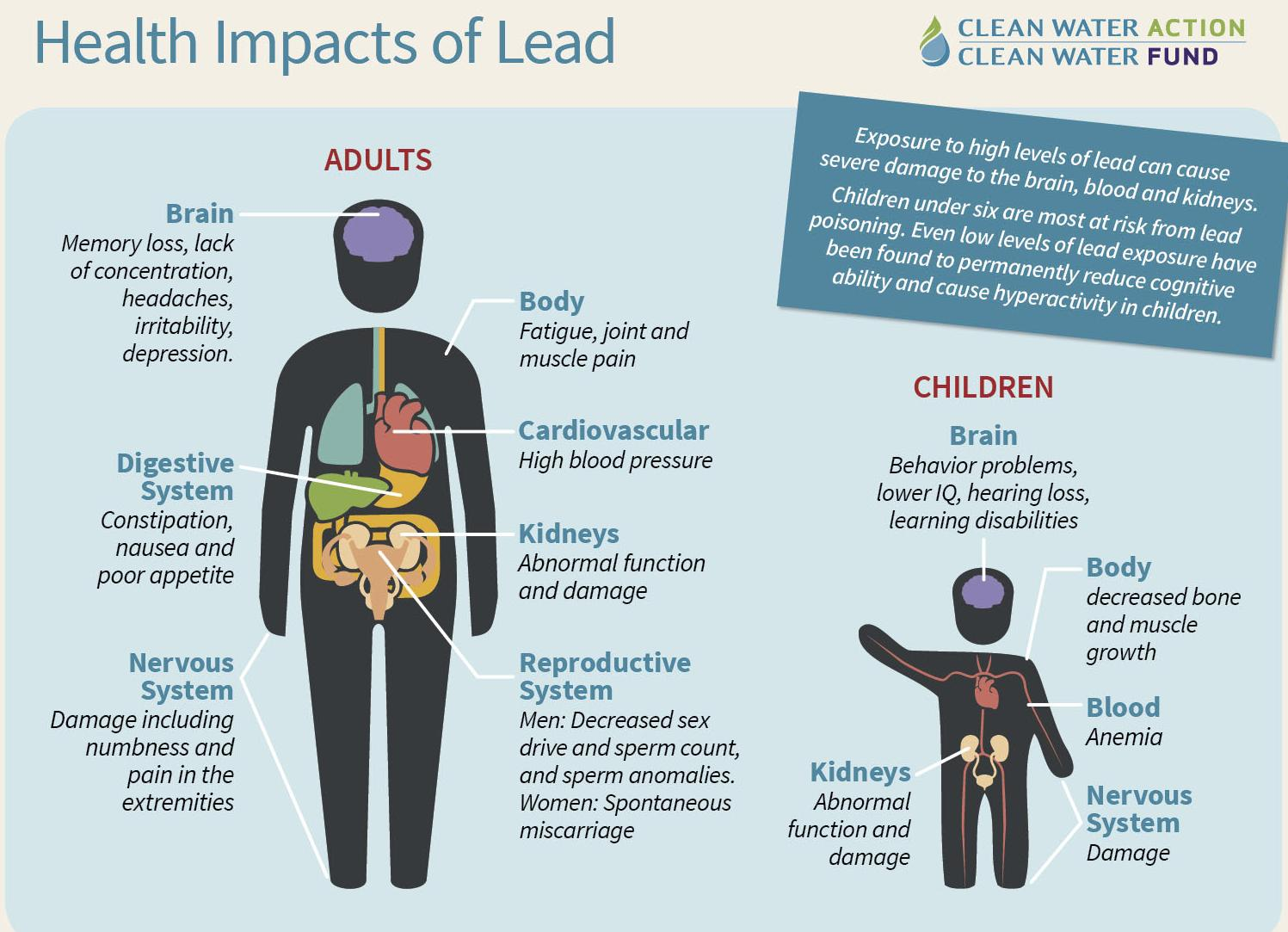 nbsp What is Lead nbsp Lead is a naturally occurring element found ...